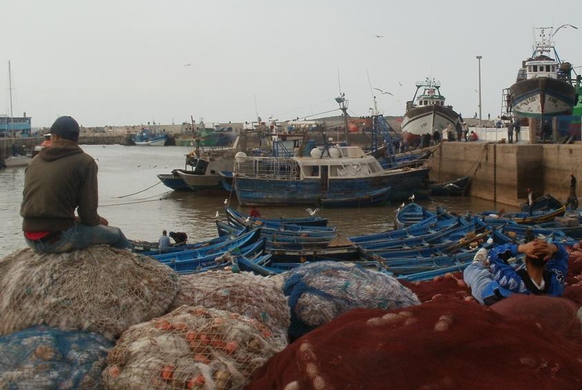Where the fish land, Essaouira, Morocco